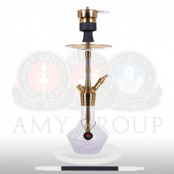 AMY Deluxe SS33.02 Fusion Shine S - Gold / Clear